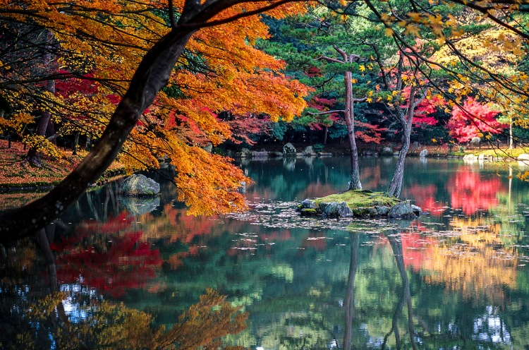 autumn-leaves-and-lake-in-kyoto-japan
